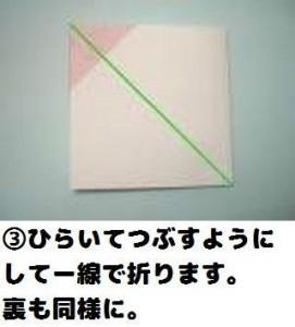 3_P5130003_convert_20100519165018